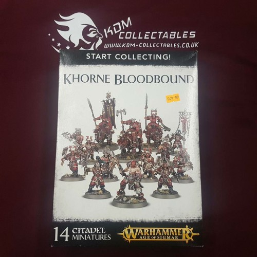Warhammer Age of Sigmar Start Collecting! 'Khorne Bloodbound'